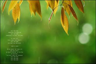 kiss-the-rain