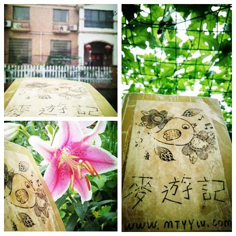 @海盐,麦麦在老家的屋前、吊瓜架下、百合花旁