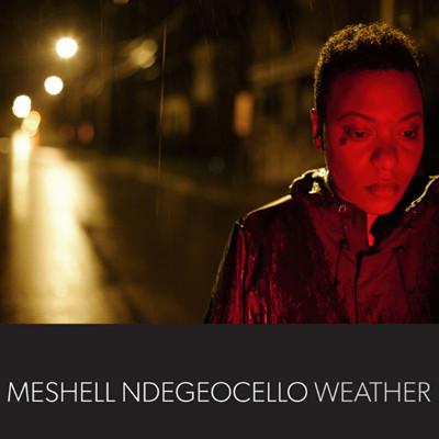 Me'Shell Ndegéocello