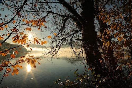 我沉迷于秋日