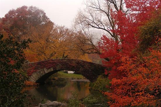 景点对比照:从夏之绚烂到秋之静美